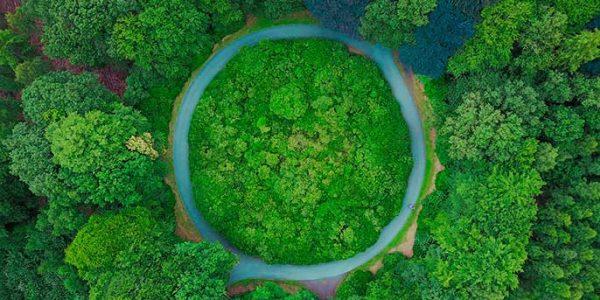Consultoría en economía circular