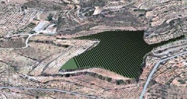 Implantación de huertos solares