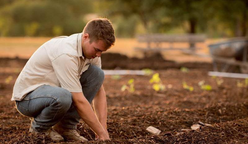 ¿Qué es la agricultura circular? Conoce este interesante concepto